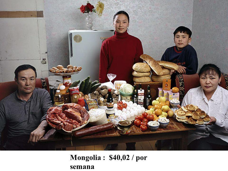 Mongolia : $40,02 / por semana