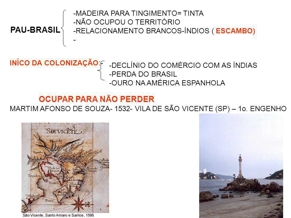 PAU-BRASIL OCUPAR PARA NÃO PERDER -MADEIRA PARA TINGIMENTO= TINTA