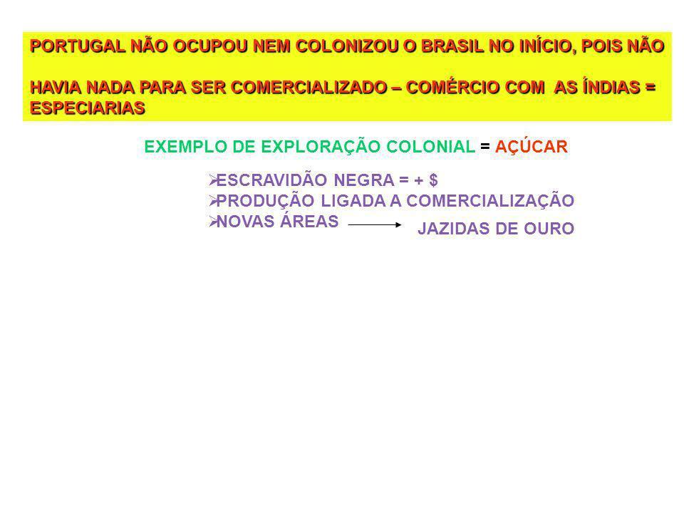 PORTUGAL NÃO OCUPOU NEM COLONIZOU O BRASIL NO INÍCIO, POIS NÃO