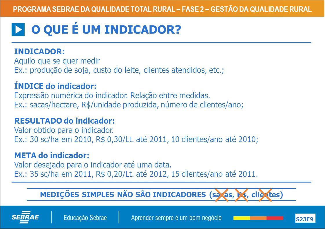 MEDIÇÕES SIMPLES NÃO SÃO INDICADORES (sacas, R$, clientes)