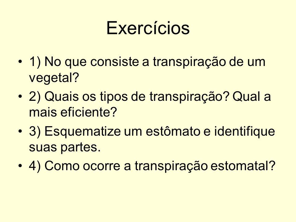 Exercícios 1) No que consiste a transpiração de um vegetal