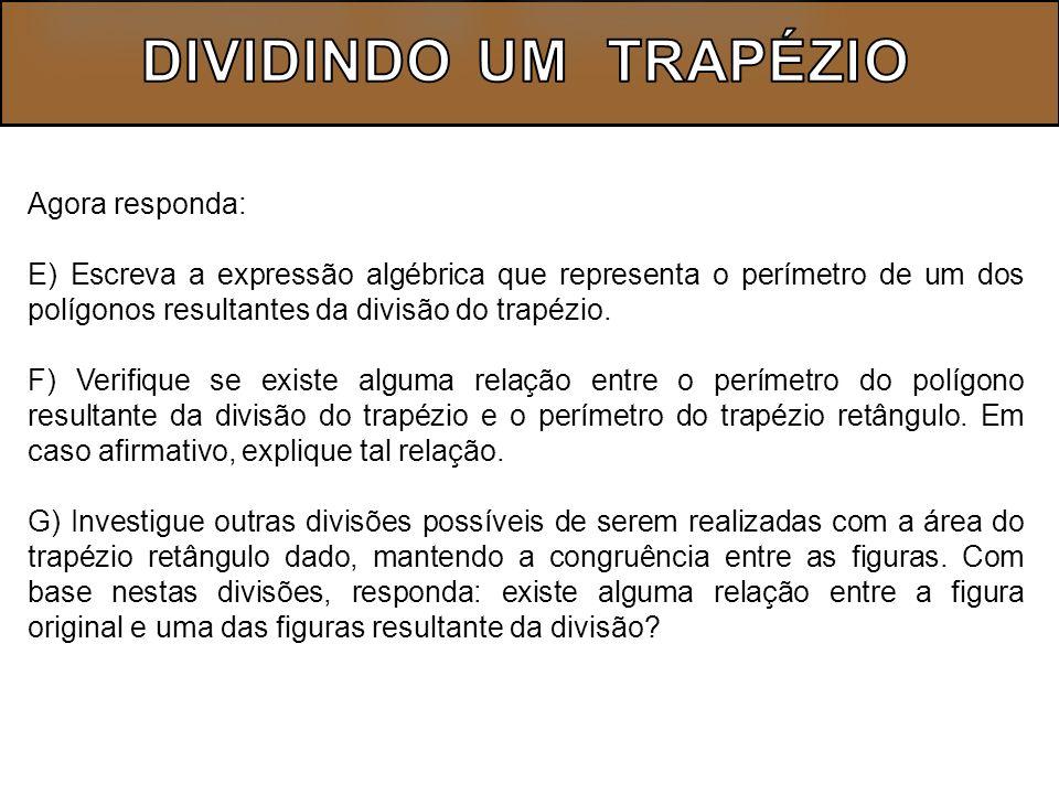 DIVIDINDO UM TRAPÉZIO Agora responda: