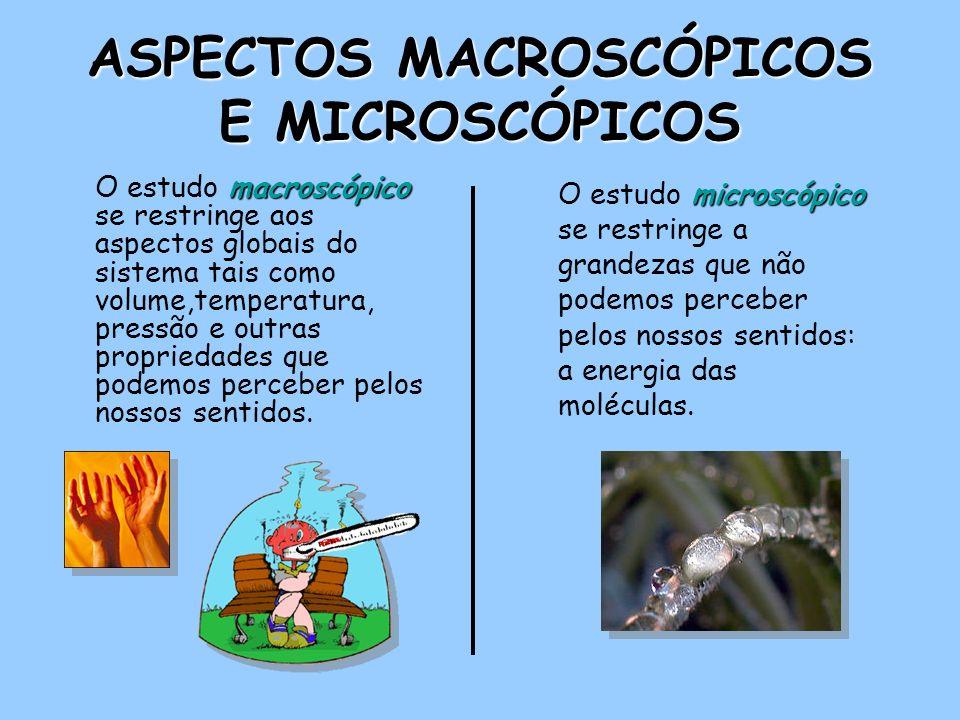 ASPECTOS MACROSCÓPICOS E MICROSCÓPICOS