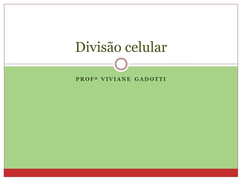 Divisão celular Profª Viviane Gadotti