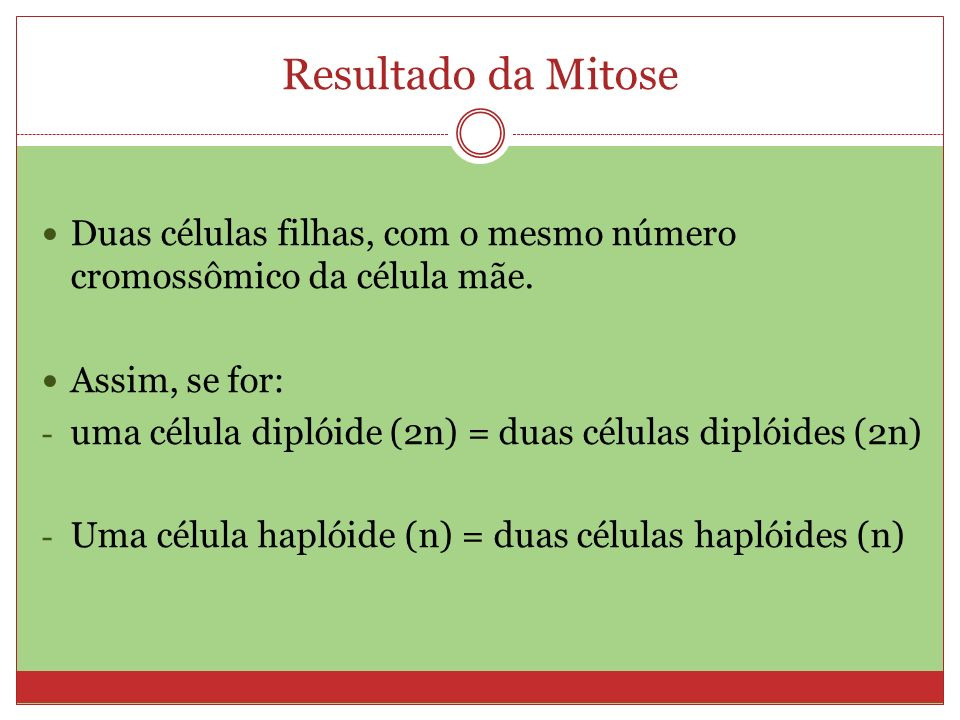 Resultado da Mitose Duas células filhas, com o mesmo número cromossômico da célula mãe. Assim, se for: