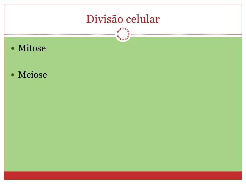 Divisão celular Mitose Meiose