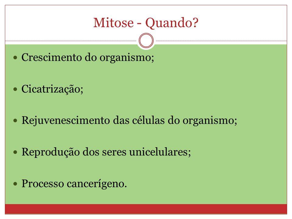 Mitose - Quando Crescimento do organismo; Cicatrização;