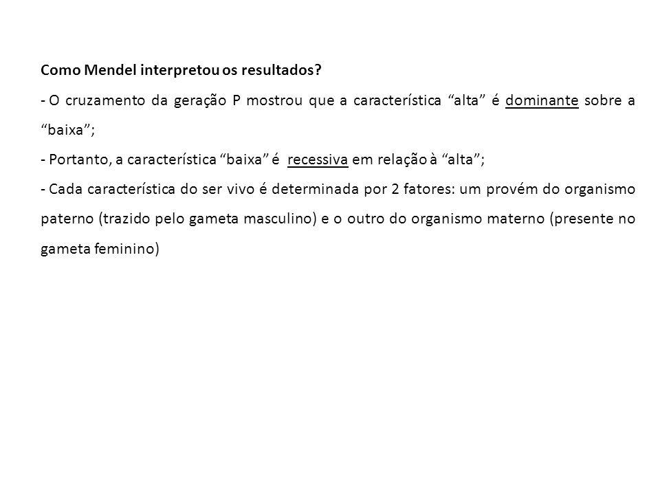Como Mendel interpretou os resultados
