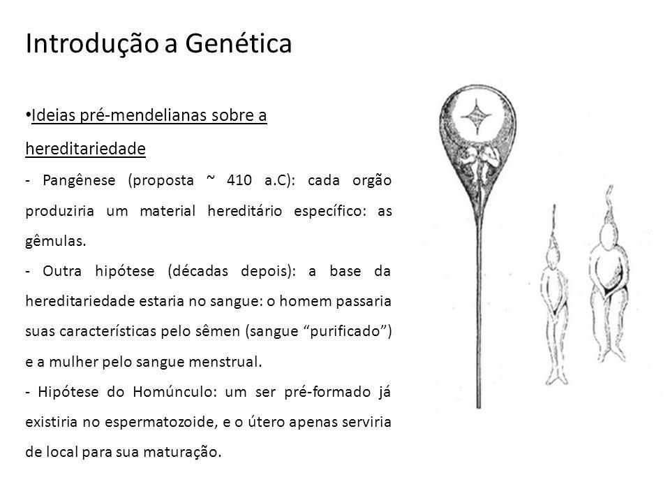Introdução a Genética Ideias pré-mendelianas sobre a hereditariedade