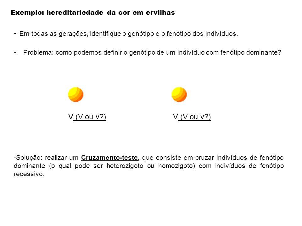 Exemplo: hereditariedade da cor em ervilhas