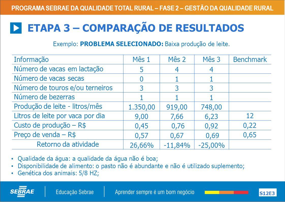 Exemplo: PROBLEMA SELECIONADO: Baixa produção de leite.