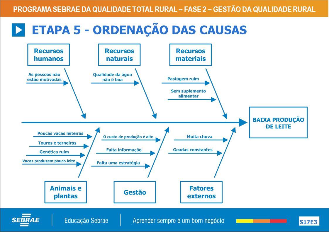 ETAPA 5 - ORDENAÇÃO DAS CAUSAS