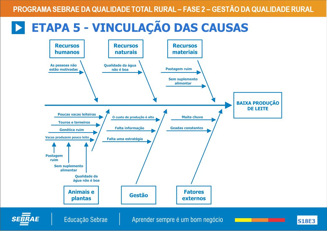 ETAPA 5 - VINCULAÇÃO DAS CAUSAS