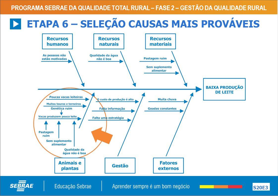 ETAPA 6 – SELEÇÃO CAUSAS MAIS PROVÁVEIS