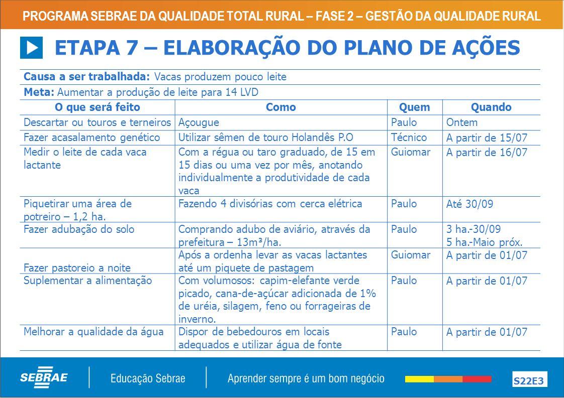 ETAPA 7 – ELABORAÇÃO DO PLANO DE AÇÕES