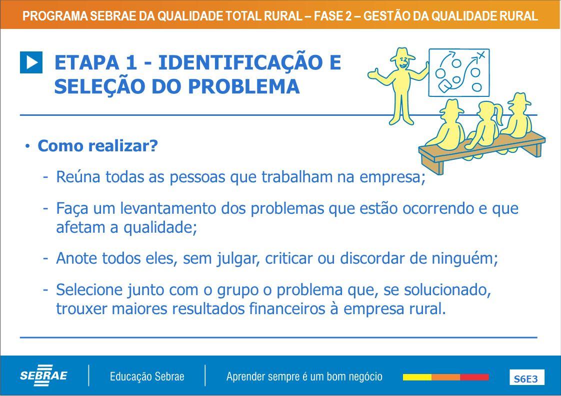ETAPA 1 - IDENTIFICAÇÃO E SELEÇÃO DO PROBLEMA