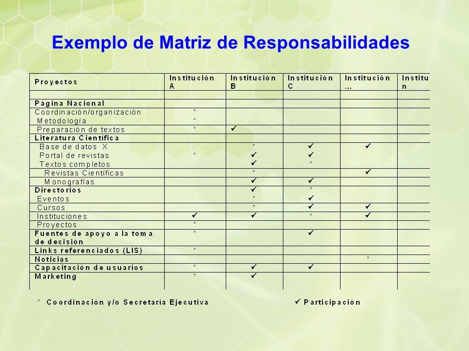 Exemplo de Matriz de Responsabilidades