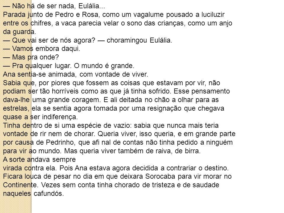 — Não há de ser nada, Eulália...