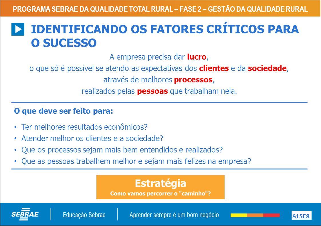 IDENTIFICANDO OS FATORES CRÍTICOS PARA O SUCESSO