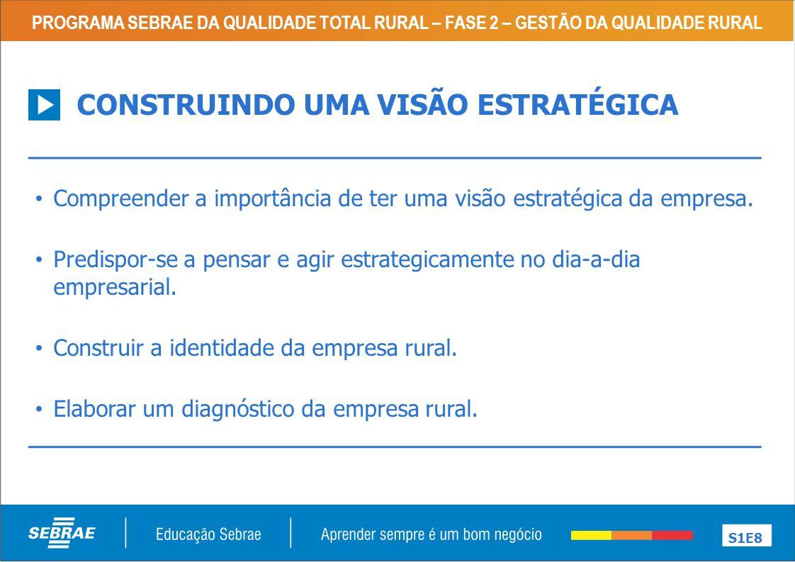 CONSTRUINDO UMA VISÃO ESTRATÉGICA