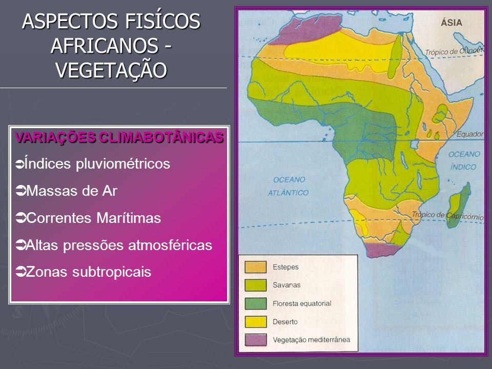 ASPECTOS FISÍCOS AFRICANOS - VEGETAÇÃO