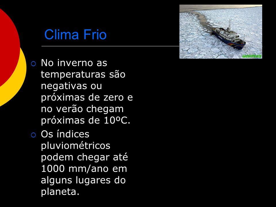 Clima Frio No inverno as temperaturas são negativas ou próximas de zero e no verão chegam próximas de 10ºC.