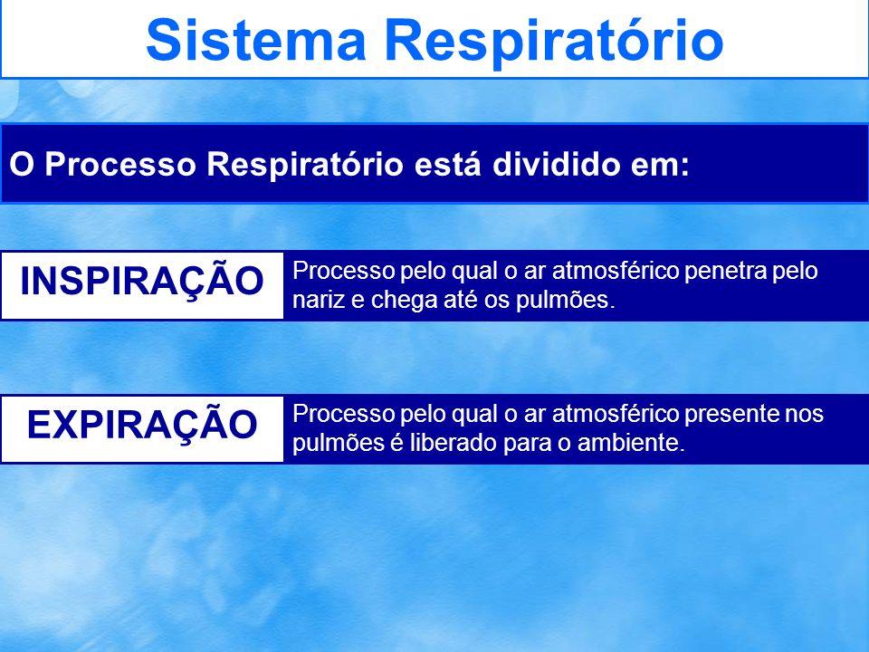 Sistema Respiratório INSPIRAÇÃO EXPIRAÇÃO