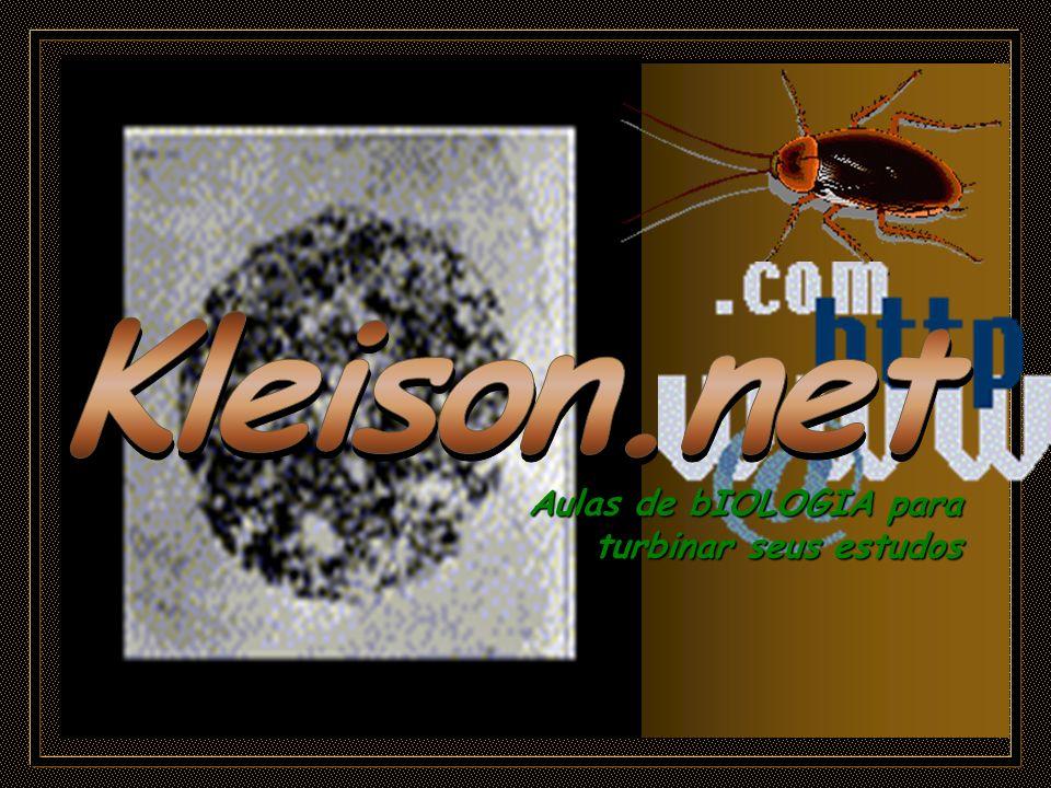 Kleison.net Aulas de bIOLOGIA para turbinar seus estudos