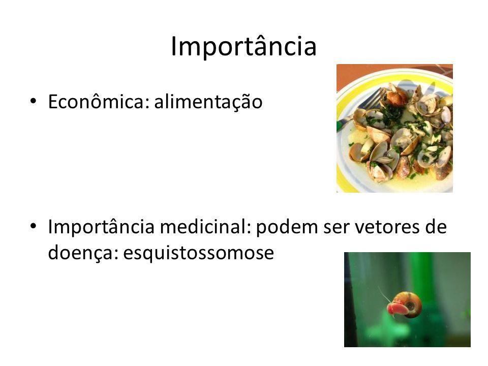 Importância Econômica: alimentação