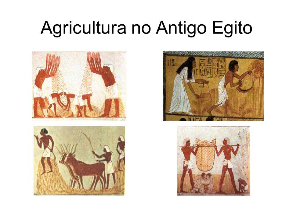 Agricultura no Antigo Egito