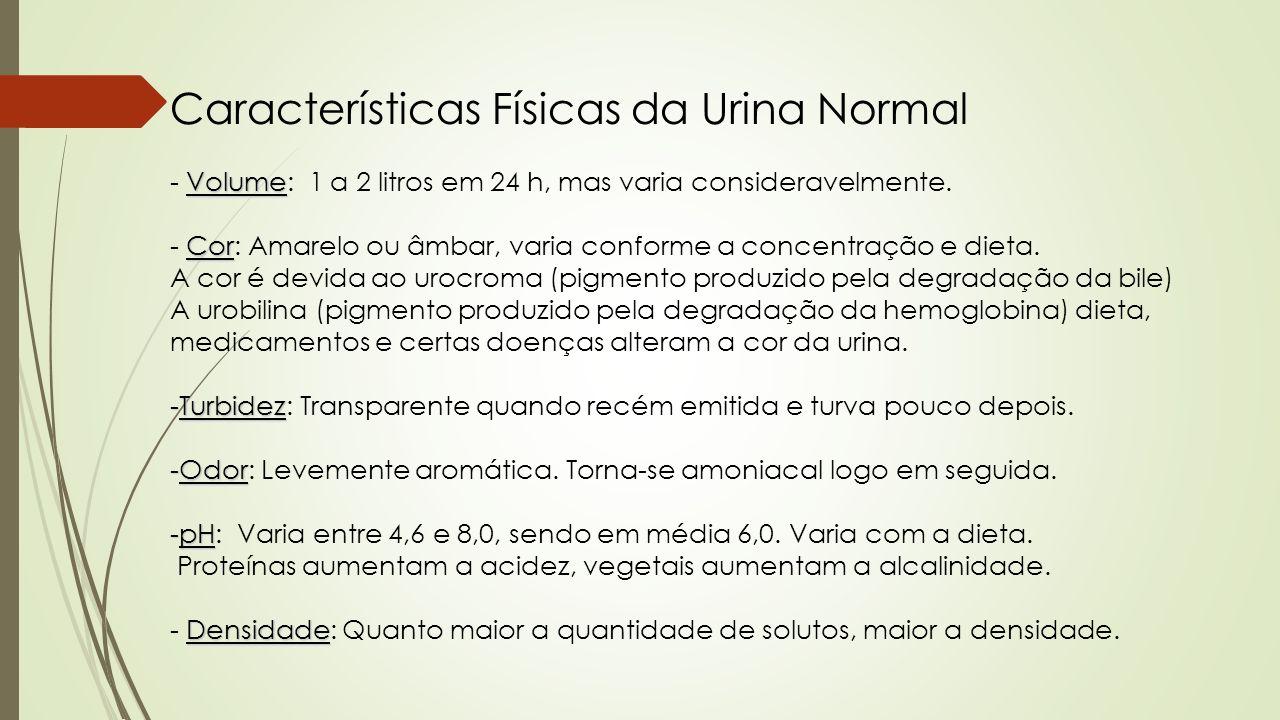 Características Físicas da Urina Normal