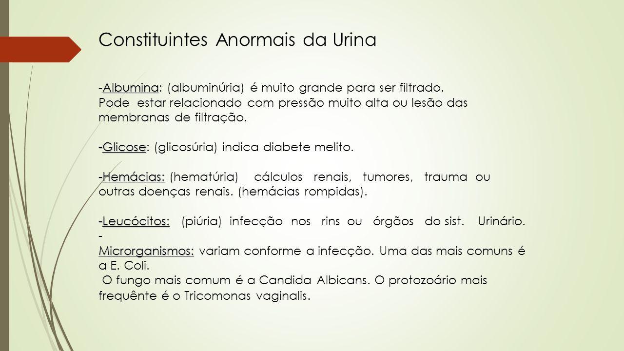 Constituintes Anormais da Urina