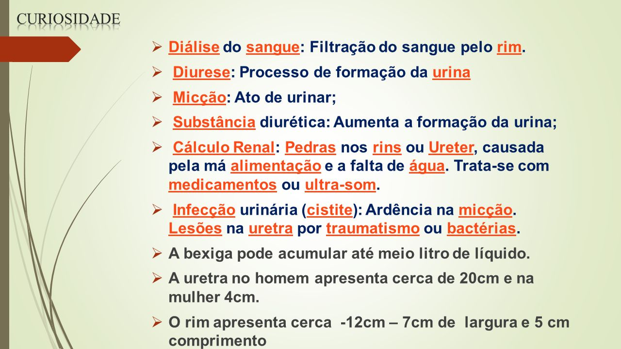 Curiosidade Diálise do sangue: Filtração do sangue pelo rim. Diurese: Processo de formação da urina.