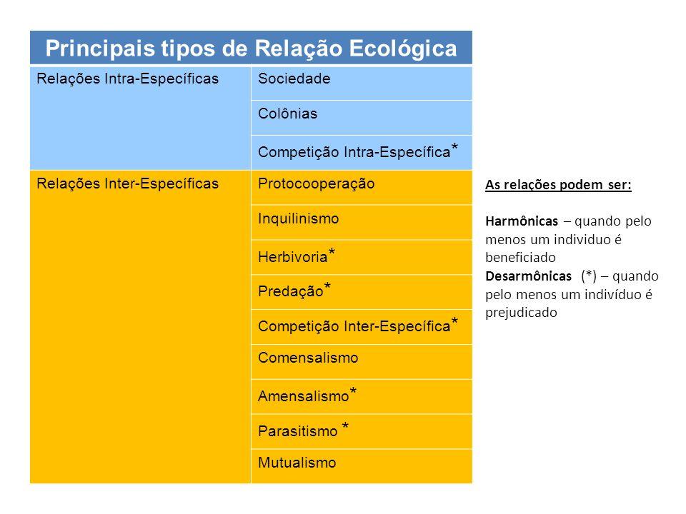 Principais tipos de Relação Ecológica