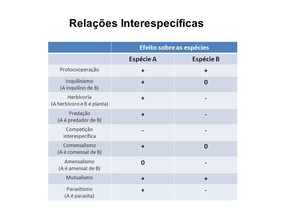 Relações Interespecíficas Efeito sobre as espécies