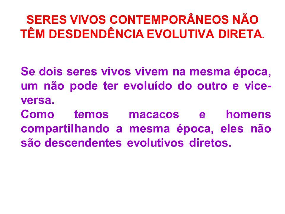 SERES VIVOS CONTEMPORÂNEOS NÃO TÊM DESDENDÊNCIA EVOLUTIVA DIRETA.