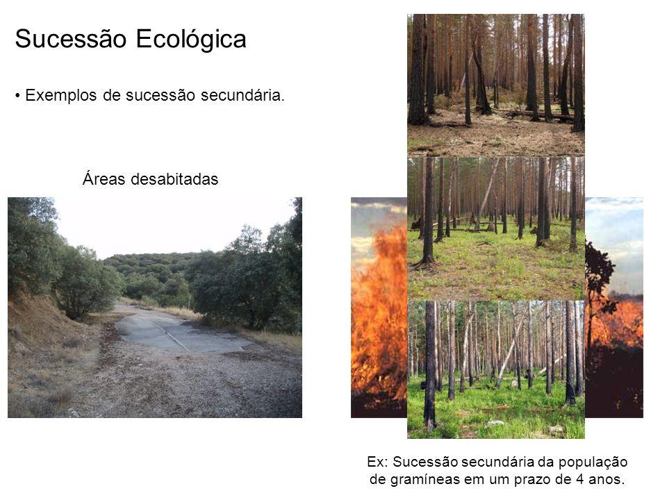 Sucessão Ecológica Exemplos de sucessão secundária. Áreas desabitadas