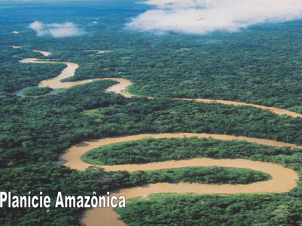 Planície Amazônica