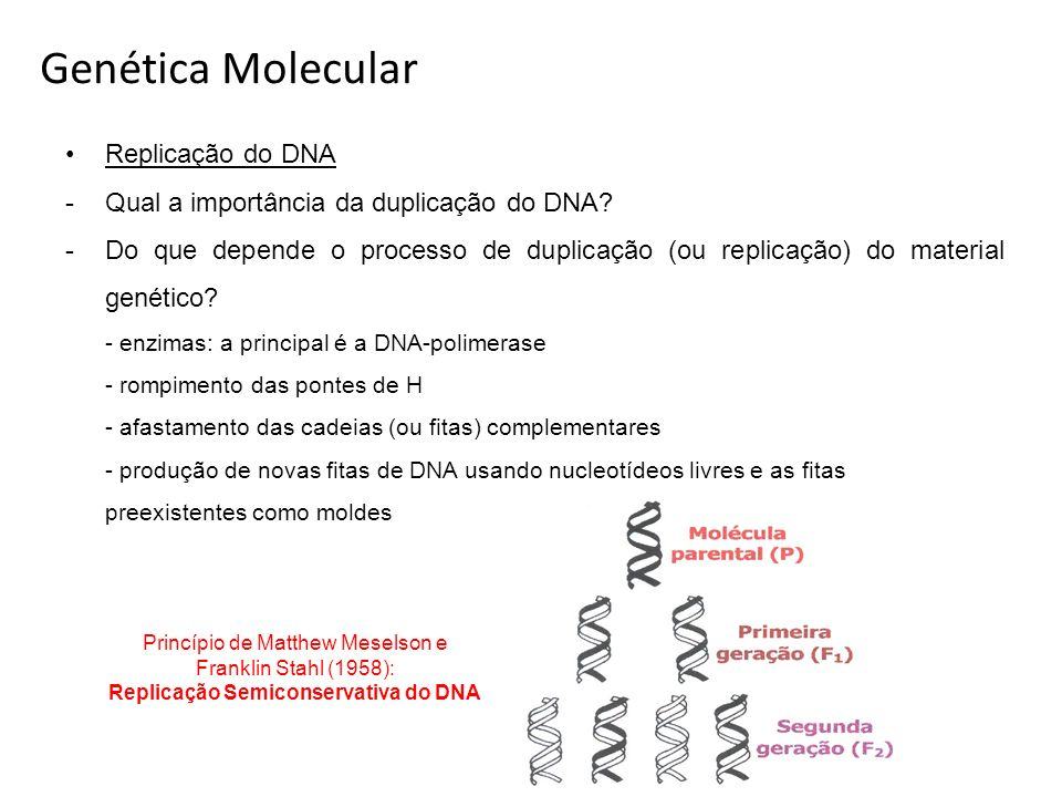 Replicação Semiconservativa do DNA