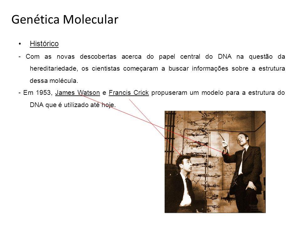 Genética Molecular Histórico