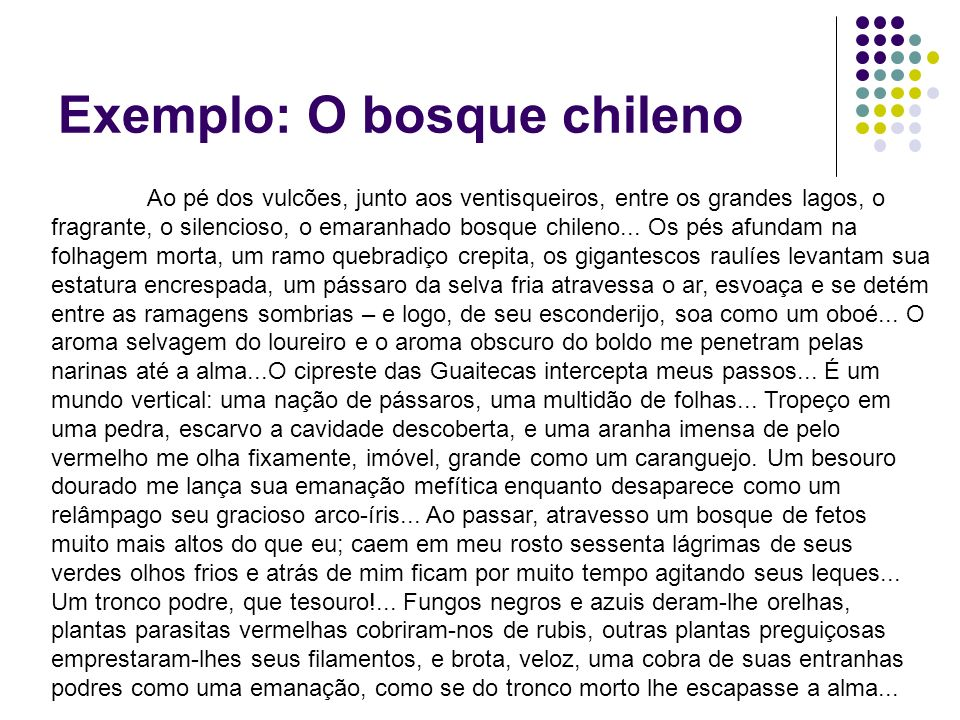 Exemplo: O bosque chileno