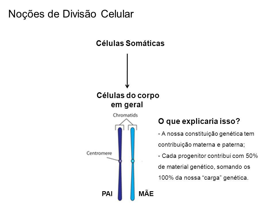 Células do corpo em geral