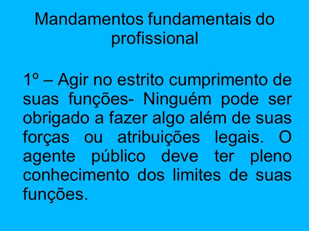 Mandamentos fundamentais do profissional
