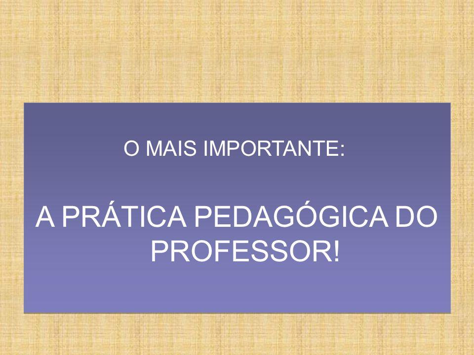 A PRÁTICA PEDAGÓGICA DO PROFESSOR!