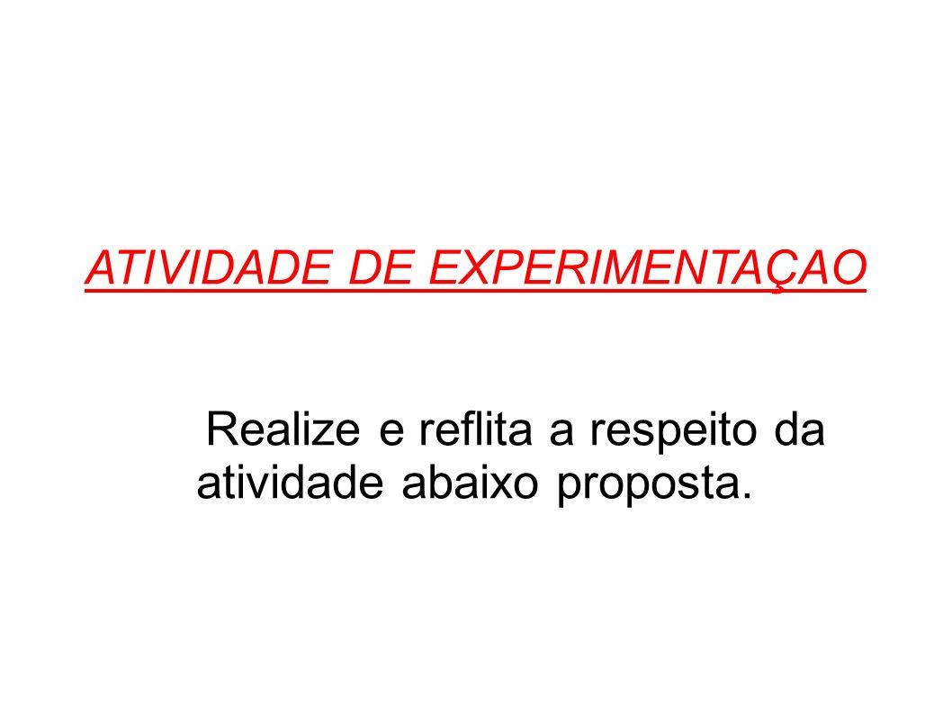 ATIVIDADE DE EXPERIMENTAÇAO