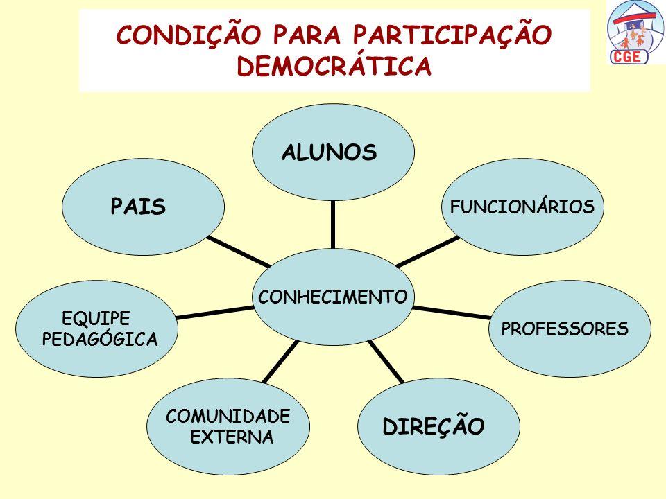 CONDIÇÃO PARA PARTICIPAÇÃO DEMOCRÁTICA