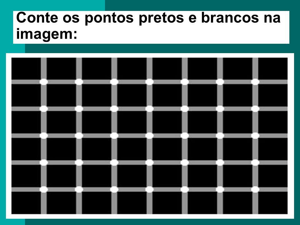 Conte os pontos pretos na imagem: