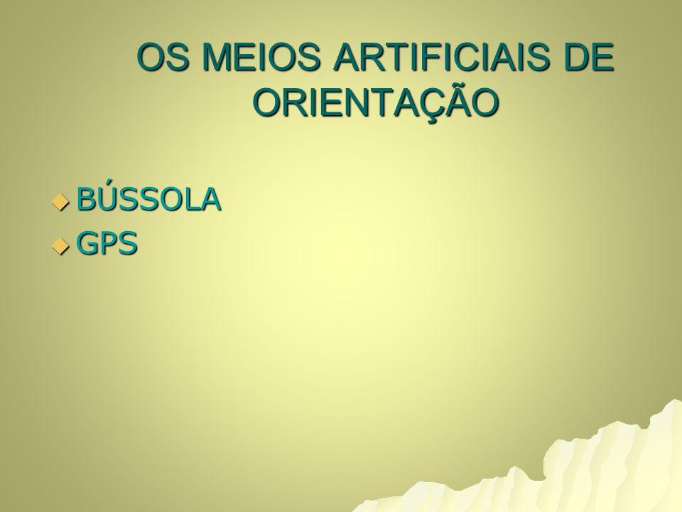 OS MEIOS ARTIFICIAIS DE ORIENTAÇÃO