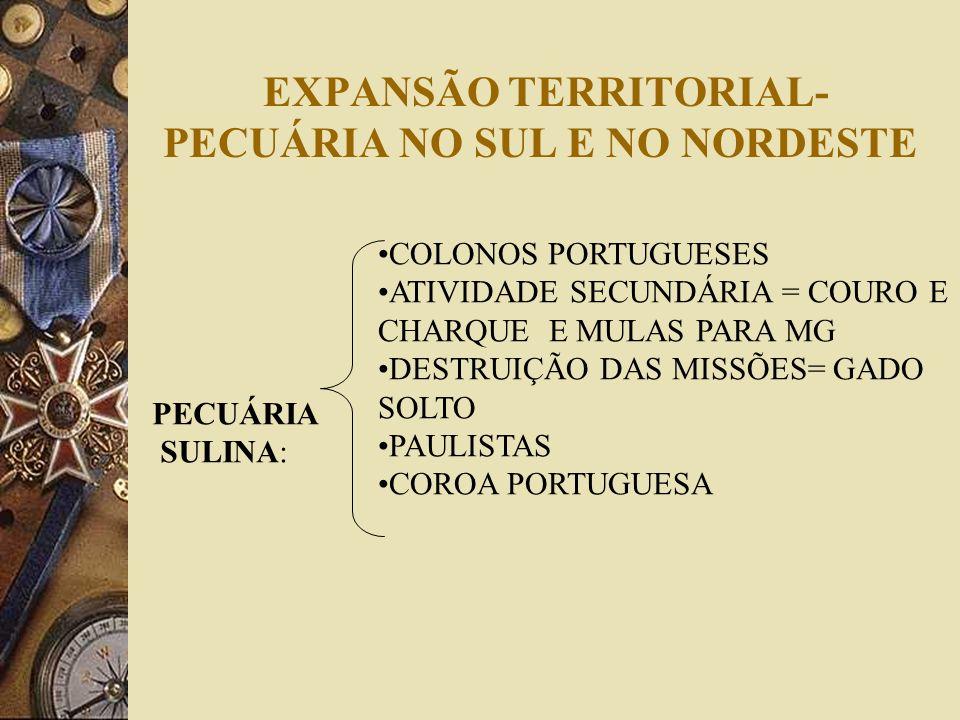 EXPANSÃO TERRITORIAL- PECUÁRIA NO SUL E NO NORDESTE