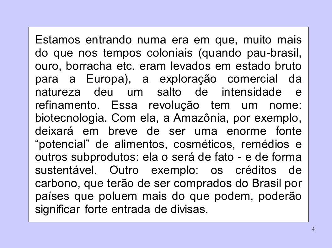 Estamos entrando numa era em que, muito mais do que nos tempos coloniais (quando pau-brasil, ouro, borracha etc.